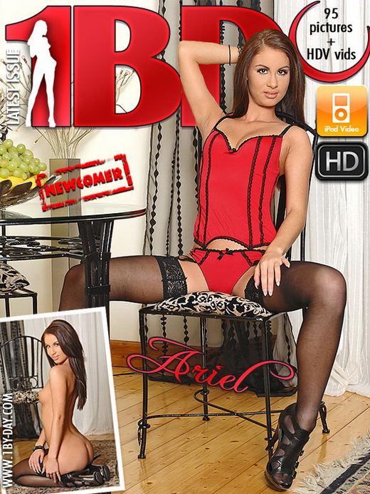Ariel - `Newcomer` - for 1BY-DAY