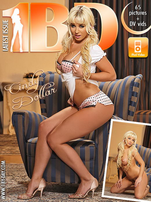 Cindy Dollar - for 1BY-DAY