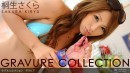 850 - Gravure Collection [2010-06-05]