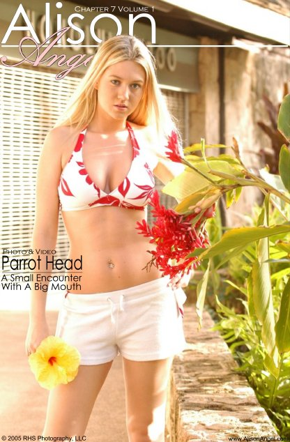 Alison Angel - `Parrot Head` - for ALISONANGEL