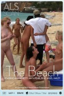 Amia Moretti & Anita Pearl & Blue Angel & Hailey Young & Jana Foxy & Jayme Langford & Tanner Mayes - The Beach