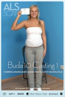 Awanda Baby & Barbie White & Cathy Heaven & Kylie Roc & Marilyn & Safina White & Yvette in Buda'10 Casting 1 from ALS SCAN