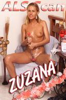 Zuzana's Choice of Toys - Set 2
