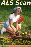 Morning Gardening
