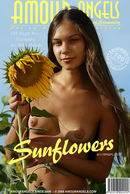 Olga in Sunflowers gallery from AMOUR ANGELS by Rasputin