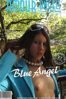 Dasha - Blue Angel