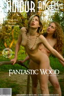 Fantastic Wood