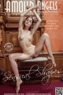 Sensual Shapes