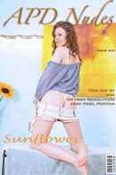 Tina Kay - #300 - Sunflower