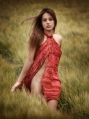 Dominica in Spring Field gallery from ARTOFDANWORLD by Artofdan