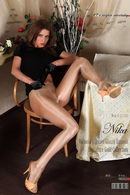 Victoria's Secret Glossy Smooth Signature Gold Collection pantyhose [part II]