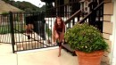 Kristine Crystal in Nudism video from ATKGALLERIA