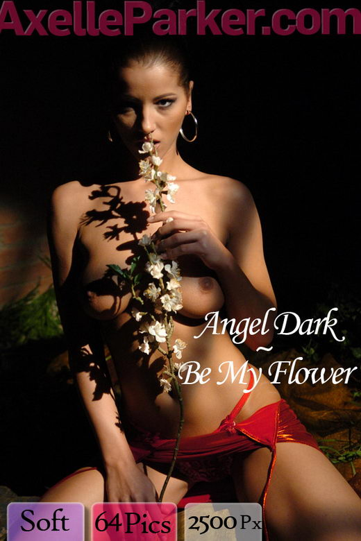 Angel Dark - `Be My Flower` - for AXELLE PARKER