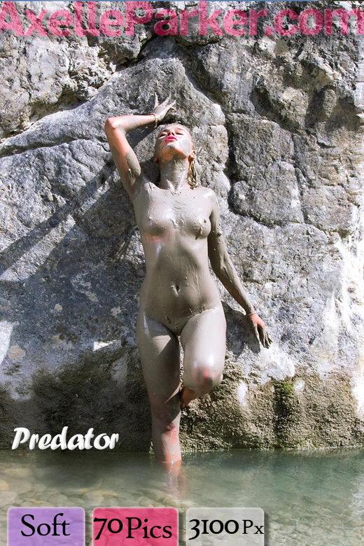 Axelle Parker - `Predator` - for AXELLE PARKER