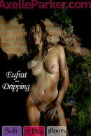 Eufrat - Dripping