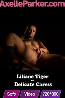 Liliane Tiger - Delicate Caress