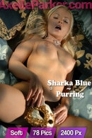 Sharka Blue - Purring