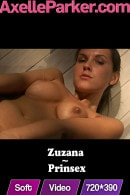 Zuzana in Prinsex video from AXELLE PARKER