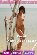 Corail in Naked At The Beach gallery from AXELLE PARKER