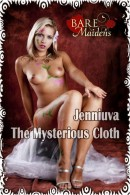The Mysterious Cloth