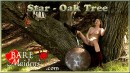Star in Oak Tree video from BARE MAIDENS