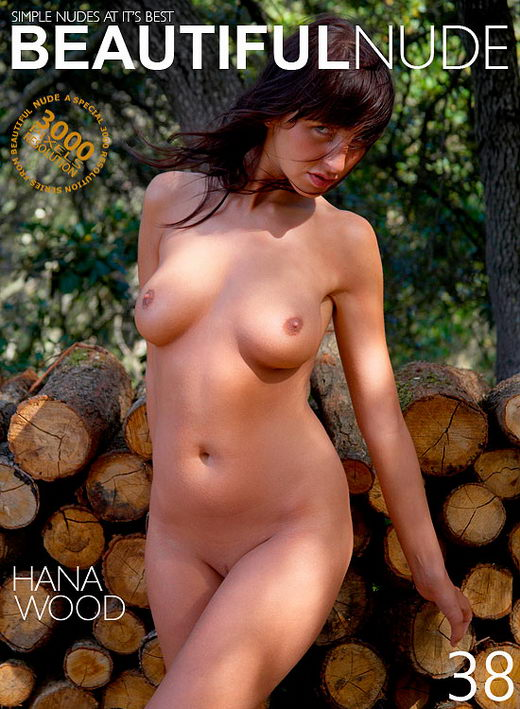 Hana - `Woodstack` - by Peter Janhans for BEAUTIFULNUDE