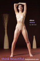 Alece - Asana