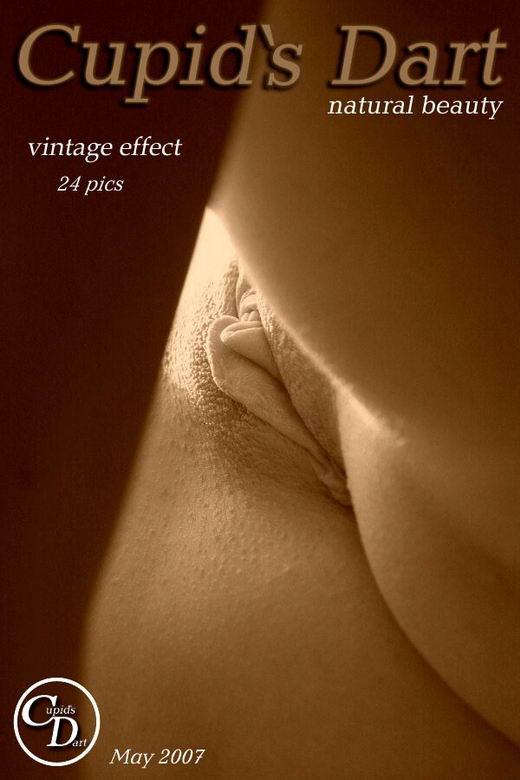 `Vintage Effect` - for CUPIDS DART