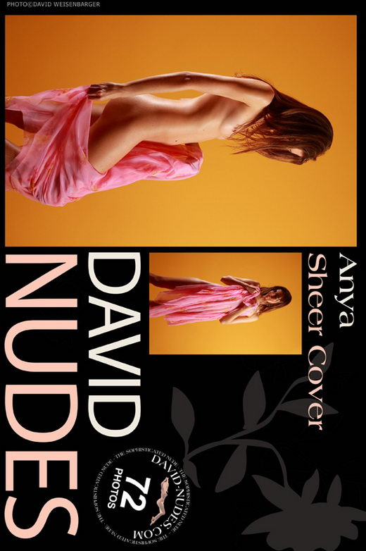 Anya - `Sheer Cover` - by David Weisenbarger for DAVID-NUDES