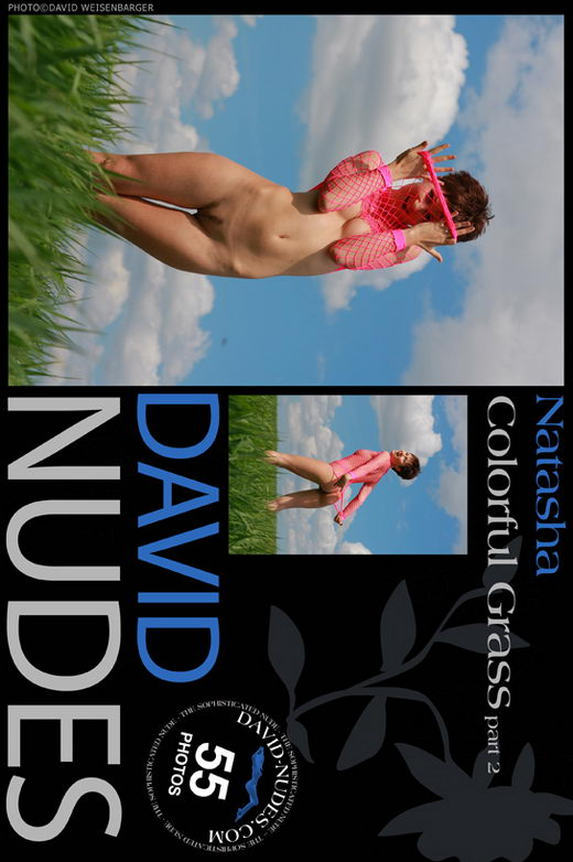 Natasha - `Colorful Grass part 2` - by David Weisenbarger for DAVID-NUDES