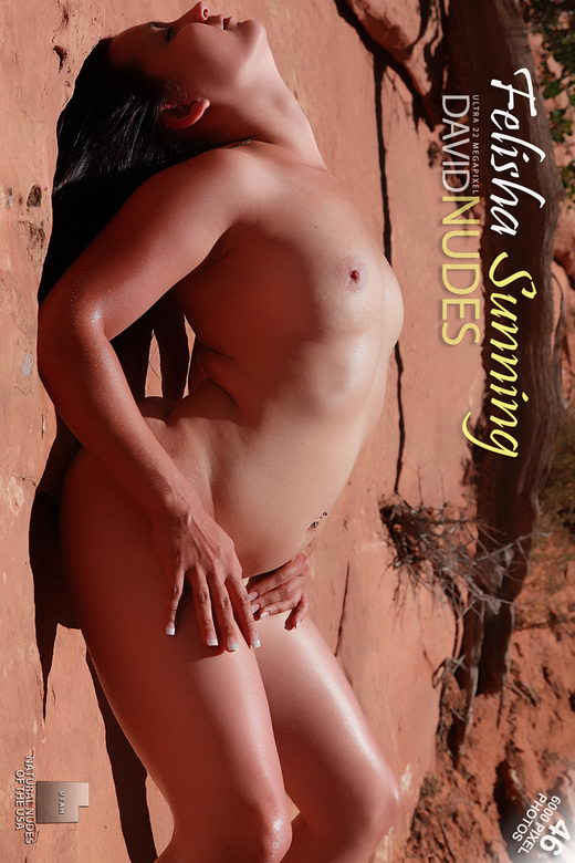 Felisha - `Sunning` - by David Weisenbarger for DAVID-NUDES