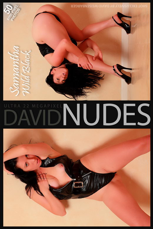 Samantha - `Wild Black` - by David Weisenbarger for DAVID-NUDES