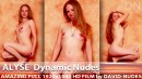 Alyse - Dynamic Nudes