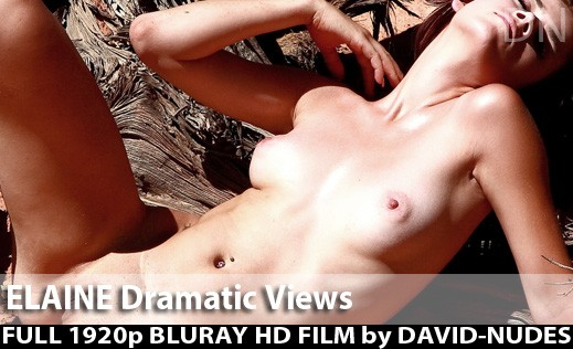 Elaine - `Dramatic Views` - by David Weisenbarger for DAVID-NUDES