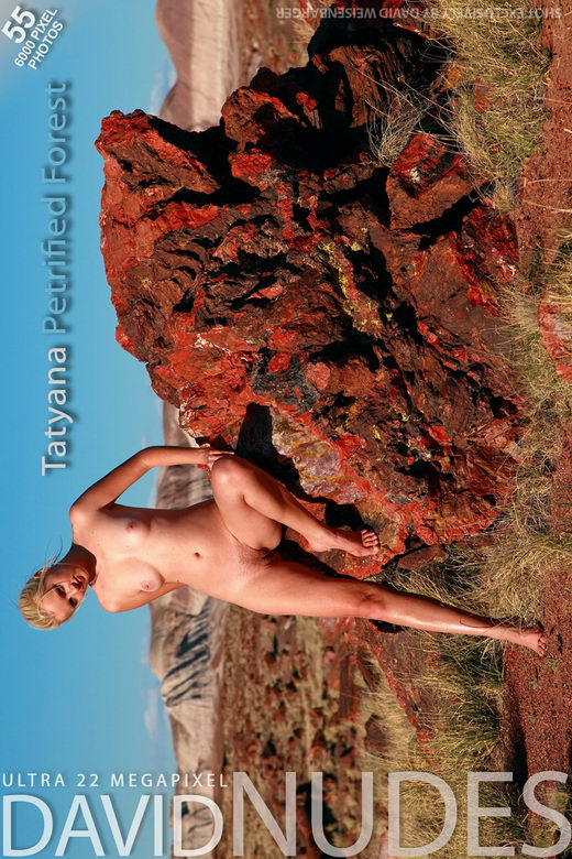 Tatyana - `Petrified Forest` - by David Weisenbarger for DAVID-NUDES