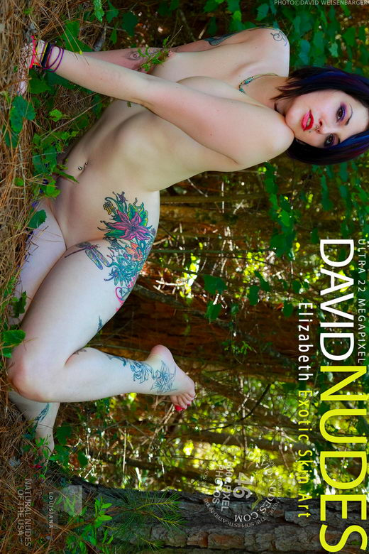 Elizabeth - `Exotic Skin Art` - by David Weisenbarger for DAVID-NUDES