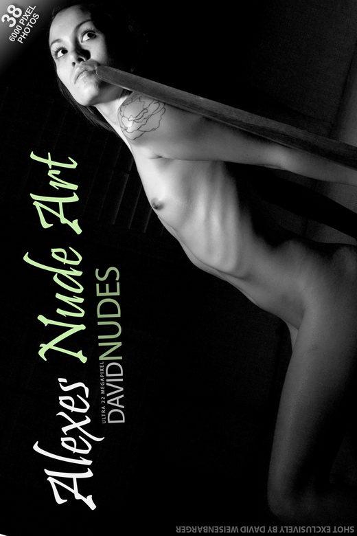 Alexes - `Nude Art` - by David Weisenbarger for DAVID-NUDES