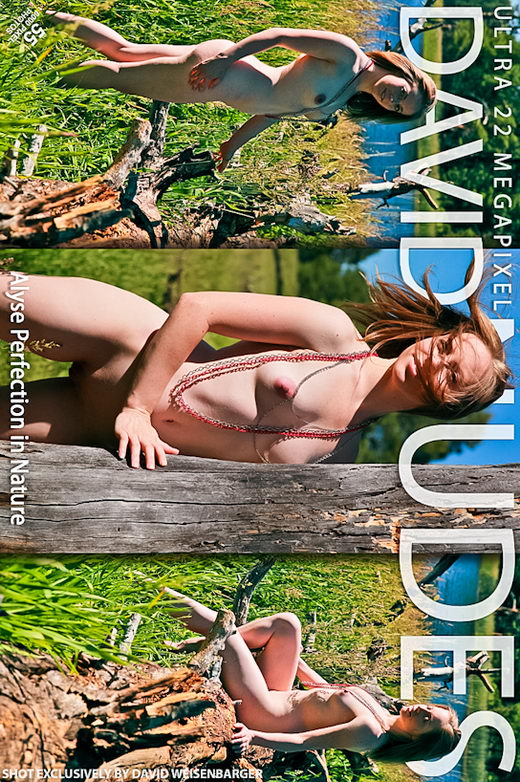 Alyse - `Perfection in Nature` - by David Weisenbarger for DAVID-NUDES