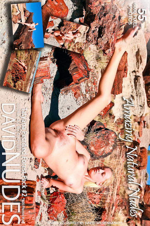 Tatyana - `Petrified Forrest - Pack #2` - by David Weisenbarger for DAVID-NUDES