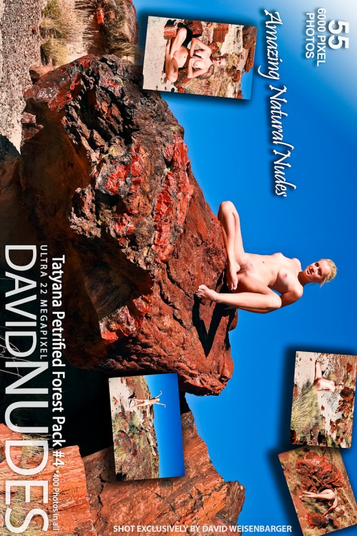 Tatyana - `Petrified Forest - Pack #4` - by David Weisenbarger for DAVID-NUDES