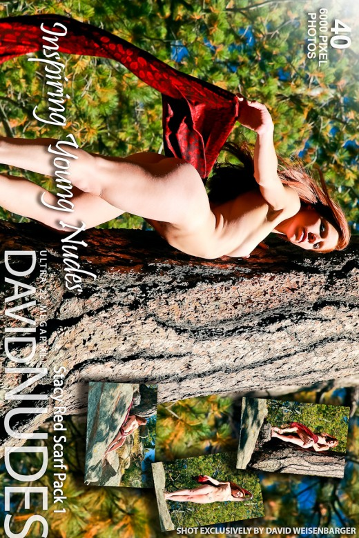 Stacy - `Red Scarf - Pack 1` - by David Weisenbarger for DAVID-NUDES