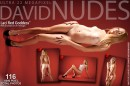 Laci in Red Goddess - Pack #2 gallery from DAVID-NUDES by David Weisenbarger