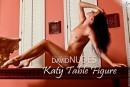 Katy Table Figure