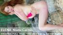 Elena - Nude Cactus
