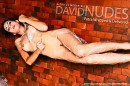 Petra in Wrapped & Delivered gallery from DAVID-NUDES by David Weisenbarger
