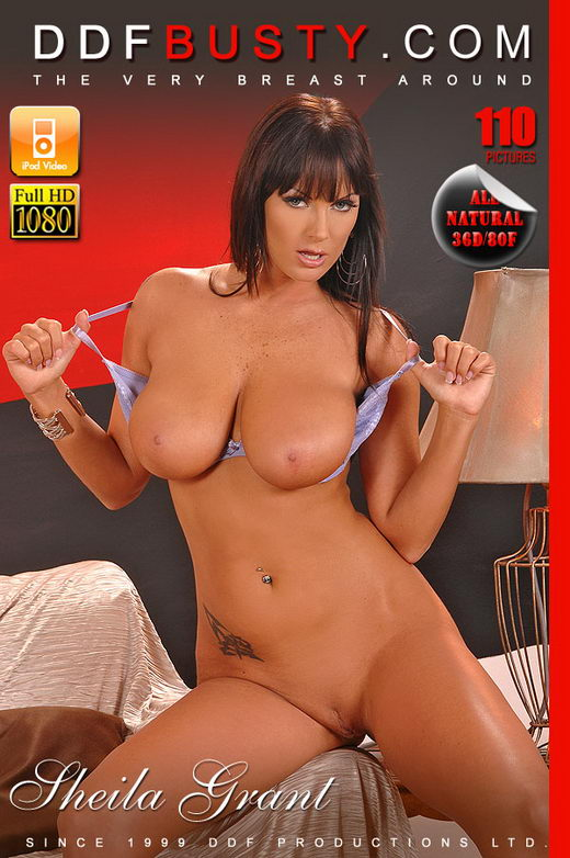 Sheila Grant - `Behold This Busty Goddess!` - for DDFBUSTY