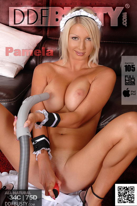 Pamela M - `Housemaid Vacuums Her Tits!` - for DDFBUSTY