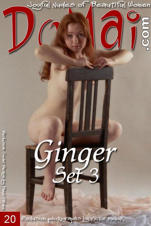 Ginger - `Set 4` - by Victor Melnik for DOMAI