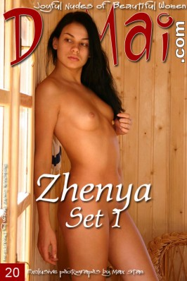 Zhenya  from DOMAI