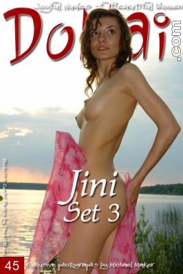 Jini  from DOMAI